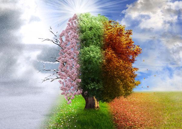600-4-seasons-2nd-fave